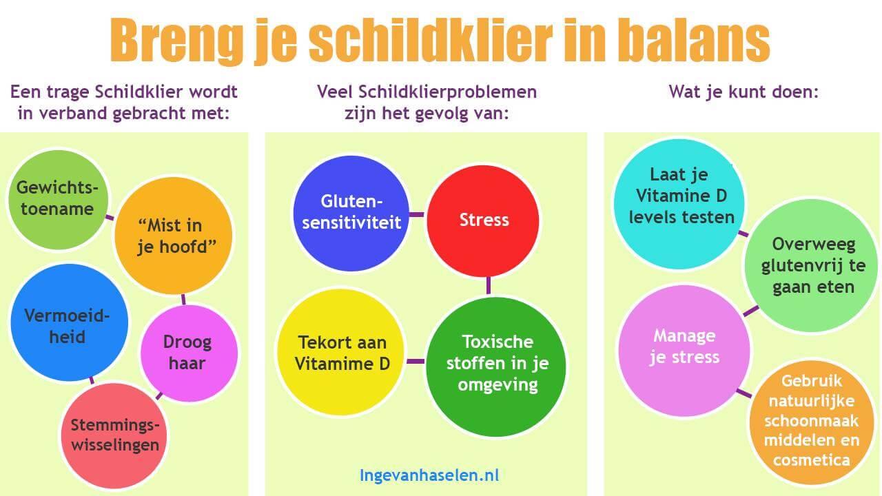 https://www.ingevanhaselen.nl/wp-content/uploads/breng-je-schildklier-in-balans.jpg