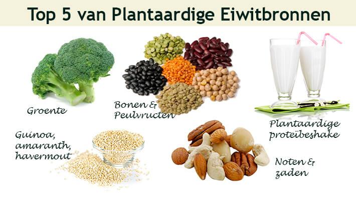 Voedingsstoffen met eiwitten